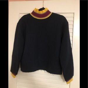 Zara Size Small Cropped Sweatshirt